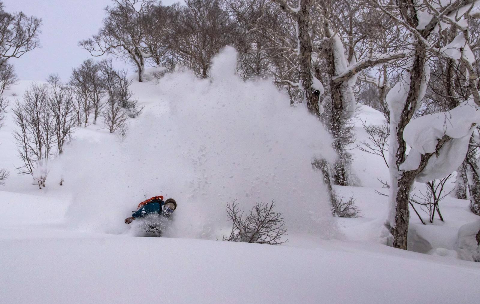 Ski & Snow Camp Japón, Tokio y Hakuba